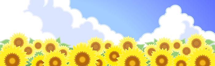 sunflower_short